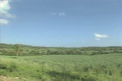 Empty green fields in countryside Stock Footage