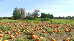 Family in Pumpkin Patch 2 Stock Footage