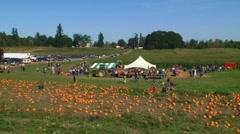 October Pumpkin Patch Festival Stock Footage