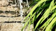 Stone water and grass Stock Footage