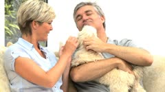 Mature Couple Petting their Dog Stock Footage