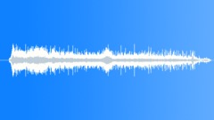 Laughs (1) Sound Effect