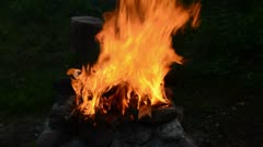 0126 fire in the summer  garden Stock Footage