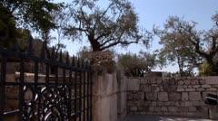 Gethsemane 5 Stock Footage
