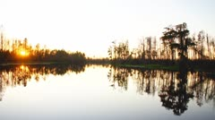 Cypress Swamp Sunset Stock Footage