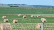 Alberta Farmland 5 Stock Footage