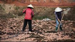 Vietnam_LDA N 00224 Stock Footage