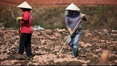 Vietnam_LDA N 00225 Stock Footage