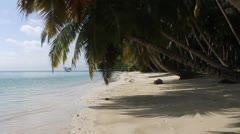 Tropical paradise Stock Footage