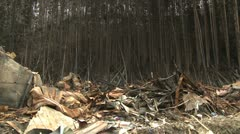 Japan Tsunami Aftermath - Burnt Out Debris And Trees In Shizugawa City Stock Footage