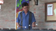 WorldClips-Marimba Player-2 Stock Footage