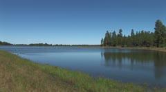 WorldClips-Pinetop Marshy Lake Shore-zoom Stock Footage