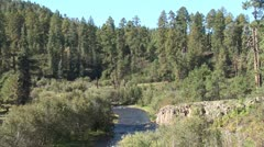 WorldClips-Pinetop Stream-ws Stock Footage