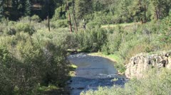 WorldClips-Pinetop Stream Stock Footage
