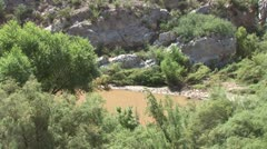 WorldClips-Salt River Foliage Stock Footage