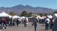 WorldClips-Tubac Fair People-2 Stock Footage