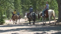 WorldClips-Banff Horse Riders-zoom Stock Footage