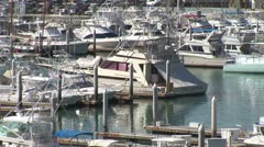 WorldClips-Cabo Marina Boats-zoom Stock Footage
