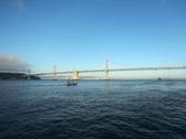 Bay Bridge 09  NTSC Stock Footage