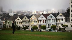 Painted Ladies 03 HD - stock footage