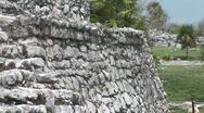 WorldClips-Iguana on Temple Wall Stock Footage