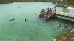 WorldClips-Xel-Ha Snorkelers-pan Stock Footage