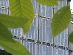 Tree leaves and solar collectors. Green solar energy.  - stock footage