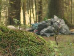 Bunch of garbage spilled in forest. Environmental pollution. Stock Footage