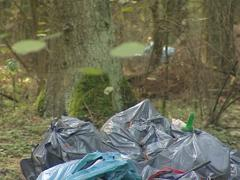 Garbage spilled in deep forest. Environmental pollution Stock Footage