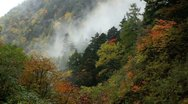 Stock Video Footage of Autumn in the Mountains.