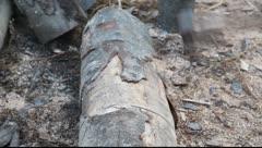 Lumber industry - stock footage