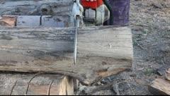 Lumberjack Stock Footage