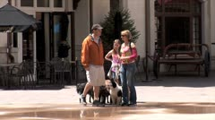 WorldClips-Dog Walkers-pan Stock Footage