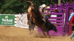 Rodeo Bull Riding Tragedy Stock Footage