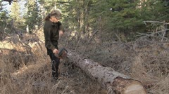 Forester Limbing Downed Tree with a Chainsaw Stock Footage