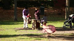 Family at park - stock footage