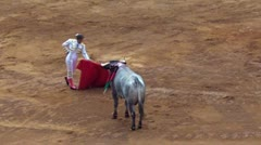 Mexican Bull Fighting Stock Footage