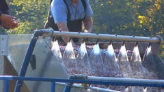 The Cleaner Cranberry; 2 Stock Footage