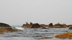 Marine rocks Stock Footage