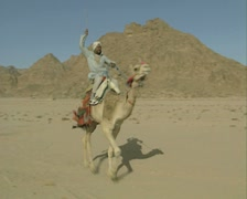 Riding a camel at speed Stock Footage