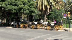 WorldClips-Malaga Horse Cariages-zooms Stock Footage