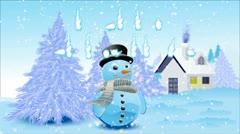 Snowy Landscape Stock Footage