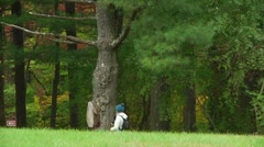 Hiker walks by the forest (LP-Voorhees-020a) Stock Footage