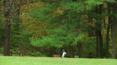 Hiker walks by the forest (LP-Voorhees-020b) Stock Footage