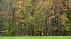 Hiker in the forest (LP-Voorhees-018b) Stock Footage