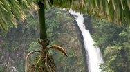 Beautiful waterfall near Fortuna, Costa Rica. Stock Footage