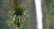 Beautiful waterfall near Fortuna, Costa Rica. Stock Footage