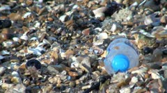 Plastic Bottle on a Beach Stock Footage