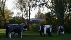 Virgin Train passes the Concrete Cows in Milton Keynes Stock Footage