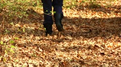 Hiker in the forest in Fall (LP-Voorhees-077) Stock Footage